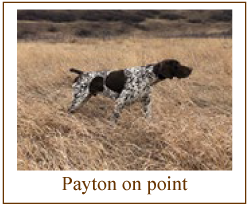 payton on point img